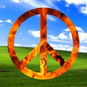 peacefulashell